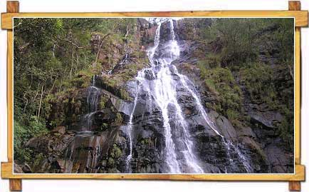 Bee Falls at Panchmarhi