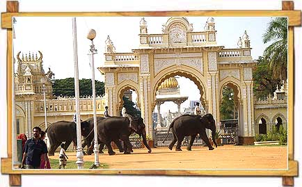 Elephant Ride outside of Mysore Palace