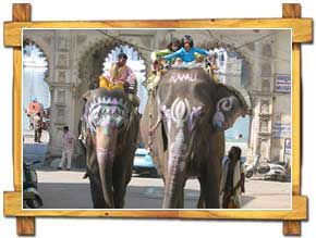 Elephant Ride in Udaipur