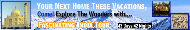 Fascinating Tour To India