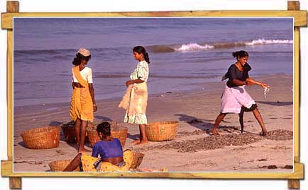 Goa women at Beach