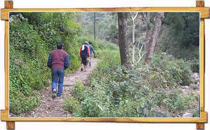 Nature Trekking and Hiking