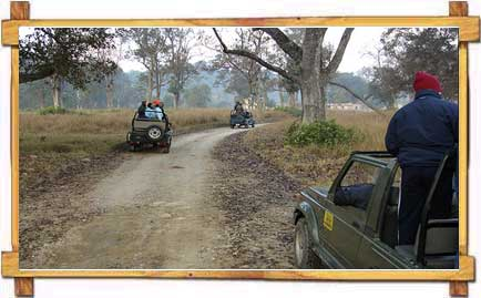 Jeep safari in Jim Corbett