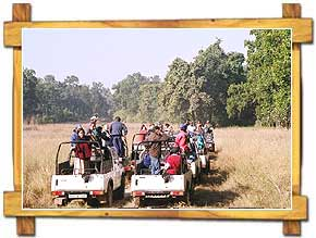 Jeep Safari Kanha