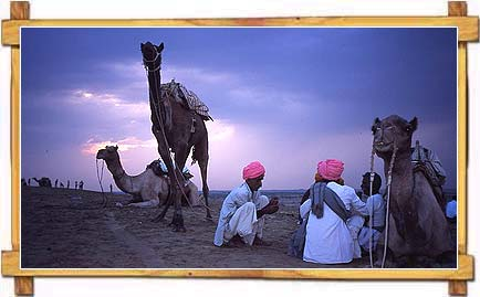 Evening  at Pushkar Fair