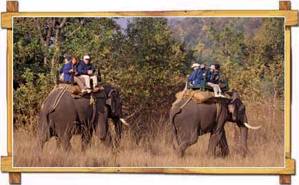 Tourists on a Safari in Bandhavgarh Jungles