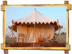 Tent accommodation at Ranthambore